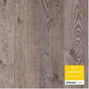 Ламинат Tarkett Дуб Натур серый Эстетика | Oak Natur Grey Estetica